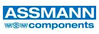Assmann Electronics, Inc.